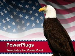 Bald Eagle On Flag Powerpoint Template Bald Eagle In Front Of An American Flag