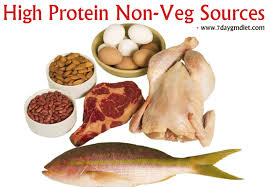 low calorie high protein indian diet plan to lose weight