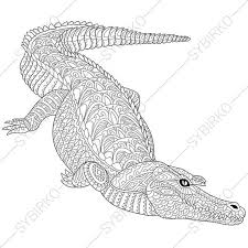 coloring pages crocodile alligator zentangle doodle
