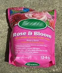 Fertilizer For Flowering Shrubs - rose fertilizer learn how to choose the best rose fertilizer