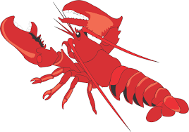 animal lobster clipart cliparts and others art inspiration