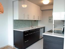 Kitchen Cabinet  Modern Galley Kitchen Ideas With Kitchen Wall - Ikea kitchen wall cabinets