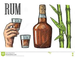 glass and bottle of rum with sugar cane stock vector image