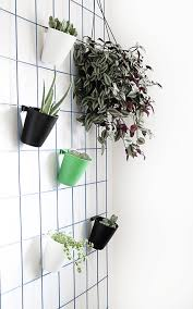 make this super easy diy hanging plant wall curbly