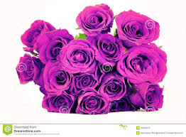 fantasy purple roses bouquet on white background vintage style