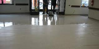 tm carpet cleaning restoration services everett snohomish