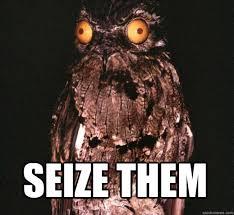 Potoo Bird Meme - this is a potoo pics