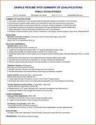 Paraprofessional Resume Sample Professional Summary Resume Example Professional Resume Template