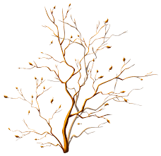 tree ornament png picture gallery yopriceville high quality