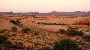 moab lions back moab magic u2013 alpha 1 on the run