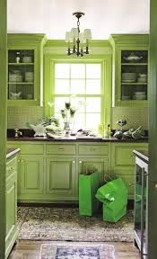 Sage Green Kitchen Ideas - kitchen 25 green kitchen stories the amazing of green