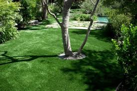 Lawn And Landscape by Softlawn Lawns U0026 Landscaping Archives Xtreme Green Synthetic Turf