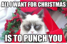 Ugly Cat Meme - 12 days of christmas with grumpy cat