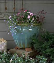 Potted Plants For Patio Container Gardens 7 238 Extensionextension