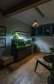 pin by denis istomin on aquascape pinterest aquariums