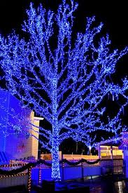 christmas light show pigeon forge tn the lights of christmas at dollywood pigeon forge tn picture of