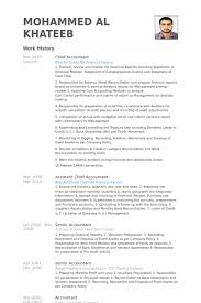 Fund Accountant Resume Chief Accountant Resume Sample Gallery Creawizard Com