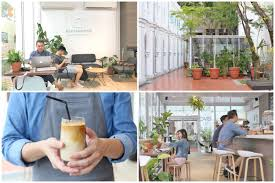 the glasshouse hidden specialty coffee and toast bar at chijmes