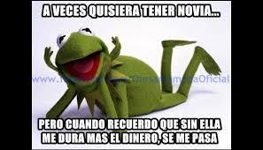 Memes Rana Rene - la rana ren礬 y los mejores memes en las redes sociales fotos