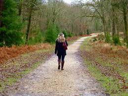 new forest walk to brush the cobwebs hello deborah
