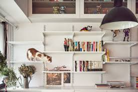 50m2 House Design by Cat Flats Designing Human Apartments For Feline Friends Cnn Style