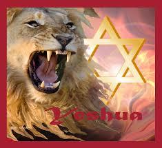Lion Flag Lion Of Judah 22