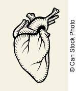 eps vector of human kidney sketch icon for web and mobile hand
