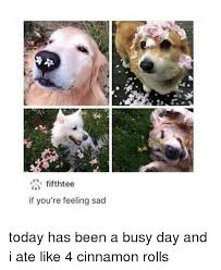Feeling Sad Meme - fifthtee if you re feeling sad today has been a busy day and i ate