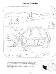 underground animals coloring pages fleasondogs org