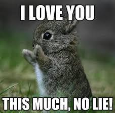 U Meme - i love u meme funny memes about love