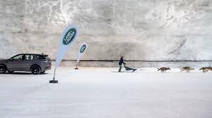 watch a land rover discovery sport race a team of sled dogs roadshow