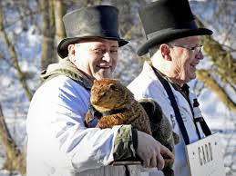octoraro groundhog day octoraro orphie predicts early spring local news