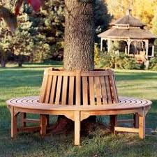 circular bench i need one of these around my big tree pull up