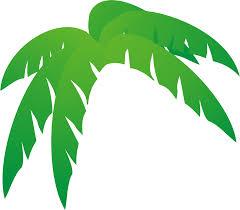 coconut palm leaf clip art 21