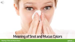 meaning of snot and mucus colors youtube
