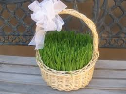 green paper easter grass eco friendly easter ideas green