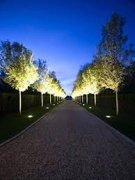 solar garden tree lights exhort me