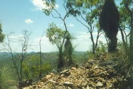 mt garnet to lappa junction trail search