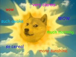 Doge Girl Meme - 25 dog memes that will always make us laugh