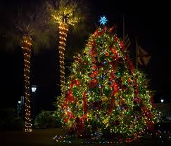 how to celebrate christmas in florida