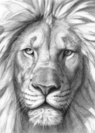 lion g106 by svetlana ledneva schukina displate