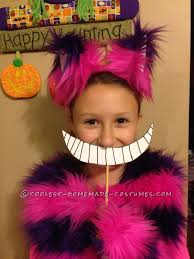 Cheshire Cat Costume Cheshire Cat Costume For A Hip