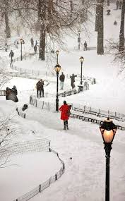 657 best let it snow images on winter snow nature and
