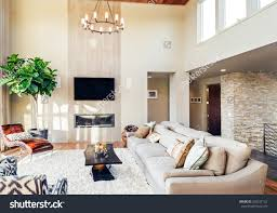 Pretty Living Rooms Design Beautiful Living Rooms With Fireplace Ecoexperienciaselsalvador