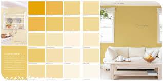 ambience berger paints premium color guide