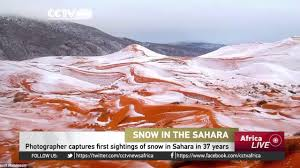 sahara snowfall photographer captures first sightings of snow in sahara in 37 years