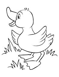 duck drawings kids kids coloring