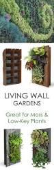 Vertical Wall Garden Plants by Plant Stand Garden Wall Plant Holders Indoor Herbs Gardening
