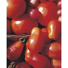 shop vegetable plants at lowes com