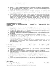 Oracle Pl Sql Resume Sample by Resume Examples For Customer Service 22 Uxhandy Com